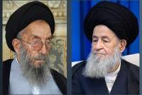 آیتالله میرمحمدی در دوران نهضت انقلاب اسلامی به تایید و تقویت نظام اسلامی پرداخته بود