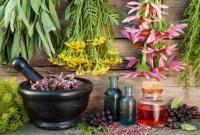 شناسایی و ضبط گیاهان دارویی بدون مجوز در قم