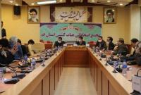 «محمد هادی بابایی علیایی» رئیس هیات کشتی استان قم شد