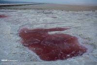 عکس/ خشک شدن دریاچه نمک «حوض سلطان» قم