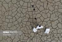 سازمان محیط زیست مقصر اصلی پرداخت نشدن حقآبه تالابها است